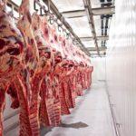 Rubin Food Group – gigant na rynku mięsnym
