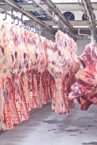 Rubin Foof Group - gigant na rynku mięsnym